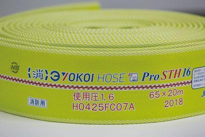 ProSTH_HP