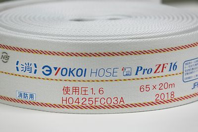 ProZF_HP