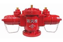 双口給水消火栓(180°型)